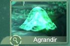 Cyanea Urtica