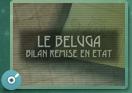 Mdisk - Bilan Béluga